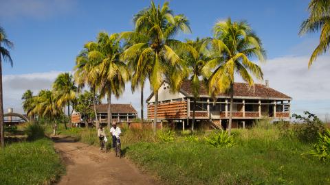 Patrimónios Tropicais Modernos